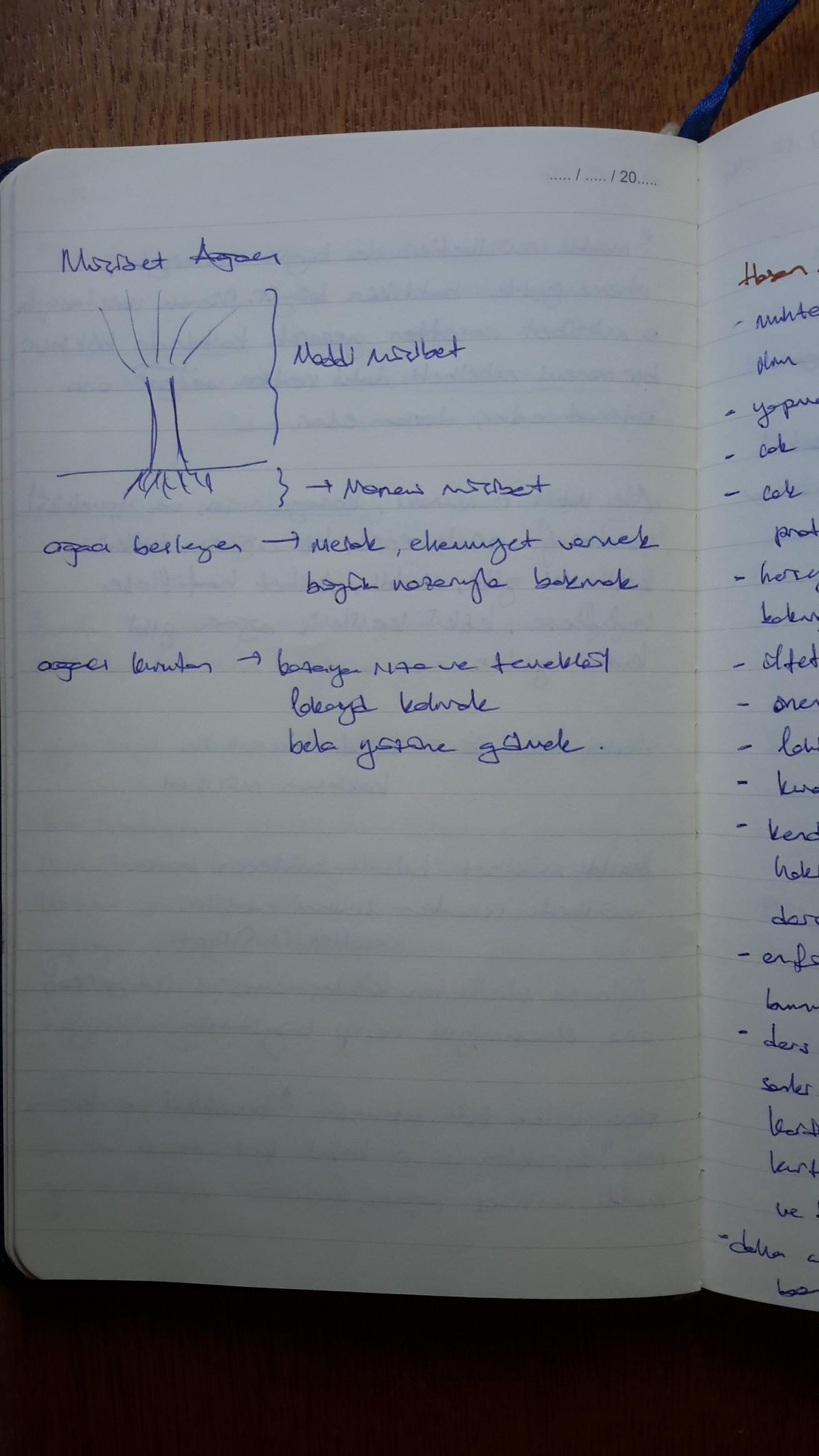 Musibet Ağacı